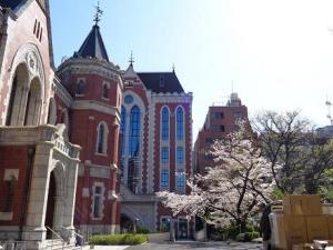 桜・旧図書館・東館.JPG