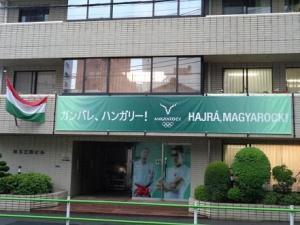 210820ハンガリー大使館応援幕 (1).jpg